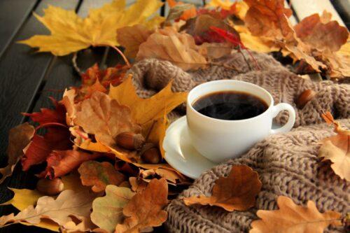 Das nächste Herbstfest Stäfa findet vom 1. - 3. Oktober 2021 statt.