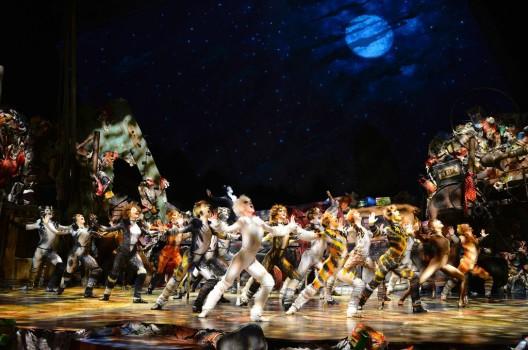 feature post image for Musical CATS kommt zurück in die Schweiz