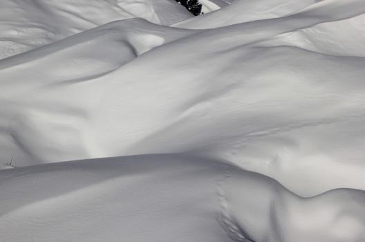 feature post image for Winterspiele 2026: Gedämpftes Olympiafieber in Zürich