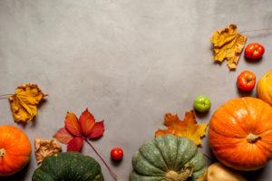 Scheunenfest zum Erntedankfest: Buntes Herbstlaub und Kürbisse weisen den Weg