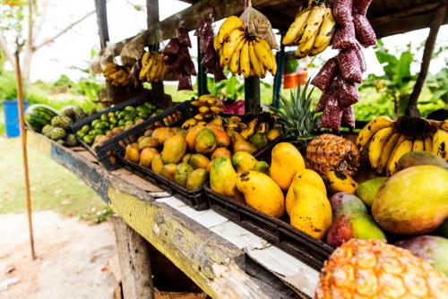 Jamaika oder Grenada: Welche Inseln sollten Sie als Urlaubsziel wählen?
