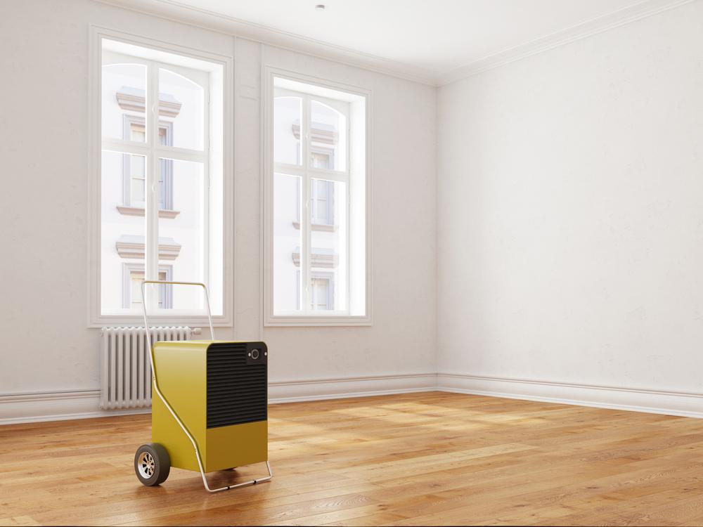 Schimmel vermeiden mit einem Bautrockner (Bild: Robert Kneschke - shutterstock.com)